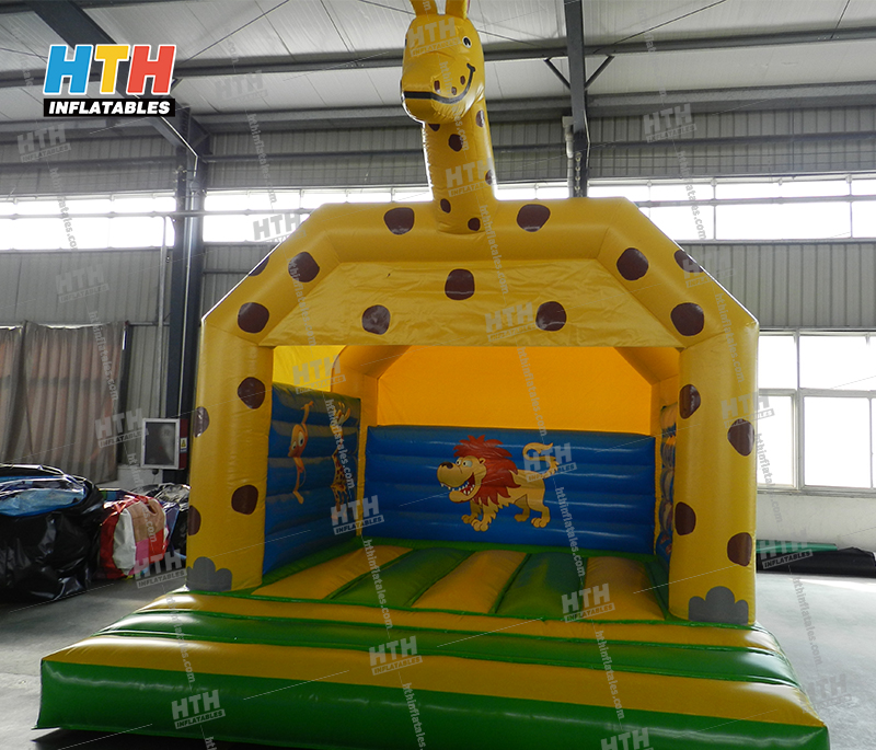 Bounce house for birthday party